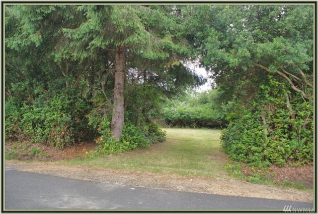 117 S Port Lp SW, Ocean Shores, WA 98569 (#1316272) :: Tribeca NW Real Estate