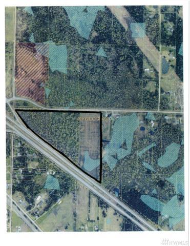 0-XXX Birchbay Lynden   31 Acres Rd, Custer, WA 98240 (#1316471) :: Keller Williams Realty
