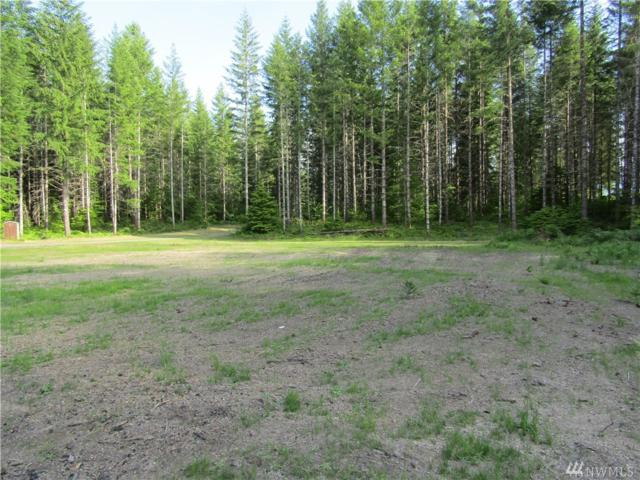 182 Cropsey Dr, Randle, WA 98377 (#1316606) :: Real Estate Solutions Group