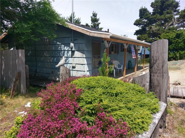 29003 K Lane, Ocean Park, WA 98640 (#1316653) :: NW Home Experts
