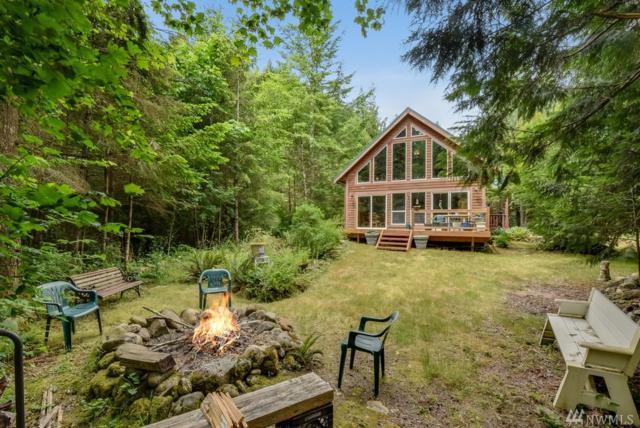 12819 698th Ave NE, Skykomish, WA 98288 (#1316821) :: Homes on the Sound