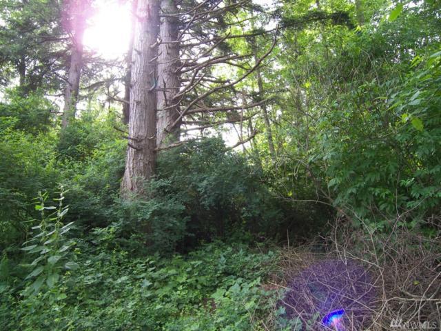 1 Island View Lane, Lummi Island, WA 98262 (#1316912) :: Keller Williams Realty