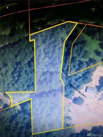0 Sprague Landing Rd, Carson, WA 98610 (#1317230) :: Kimberly Gartland Group