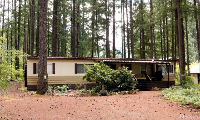 114 Cowlitz View Dr, Packwood, WA 98361 (#1317320) :: Real Estate Solutions Group