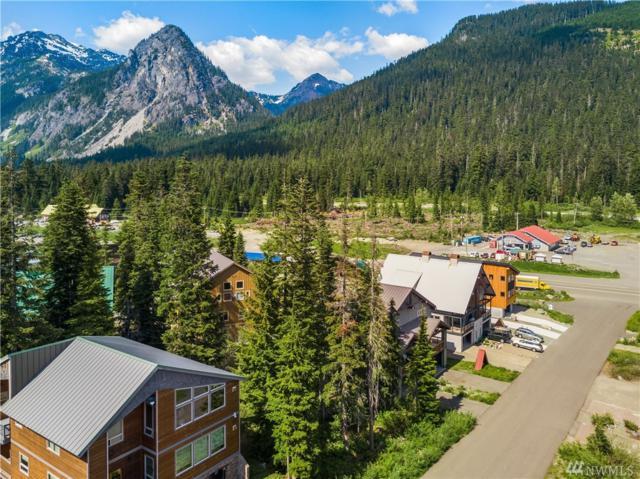26-& 30 Guye Peak Lane, Snoqualmie Pass, WA 98068 (#1317493) :: Brandon Nelson Partners