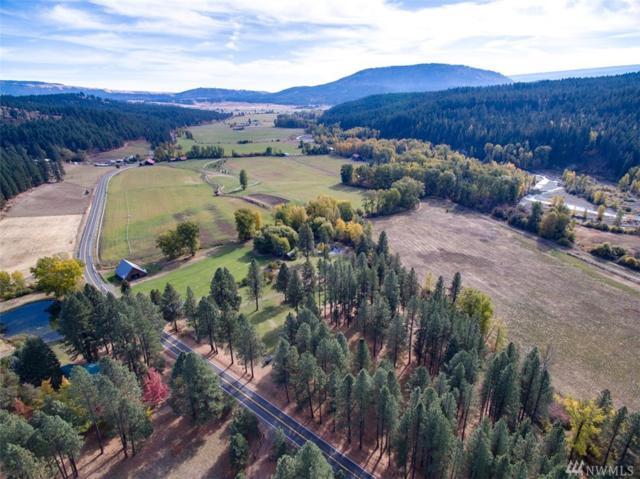 3431-4061 Teanaway Rd, Cle Elum, WA 98922 (#1317652) :: Keller Williams Realty Greater Seattle