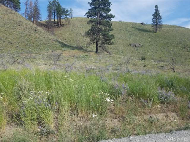0-nna Springs Canyon Rd, Orondo, WA 98843 (#1317664) :: Homes on the Sound
