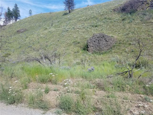 0-nna Springs Canyon Rd, Orondo, WA 98843 (#1317667) :: Homes on the Sound