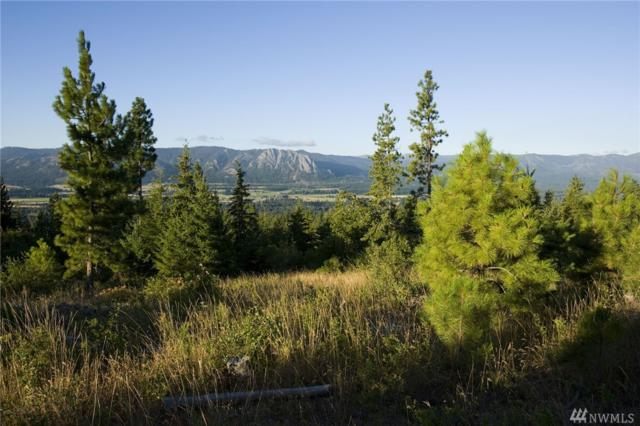 12 (Lots 1-12) Jack Pine Dr, Cle Elum, WA 98922 (#1317907) :: Keller Williams Realty Greater Seattle