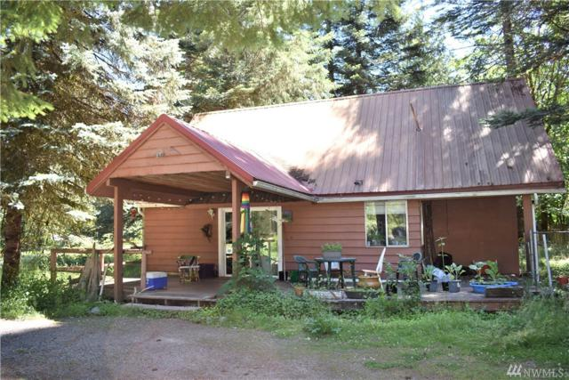 104 Slalom Wy, Packwood, WA 98361 (#1318673) :: Real Estate Solutions Group