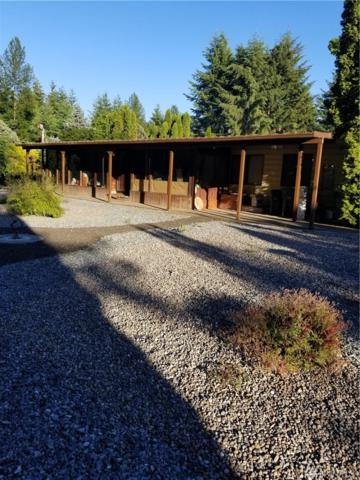 19910 221st Ave E, Orting, WA 98360 (#1318855) :: Real Estate Solutions Group