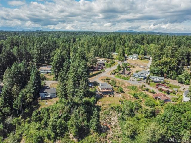 12507 103rd St Ct KP, Gig Harbor, WA 98329 (#1319327) :: Homes on the Sound