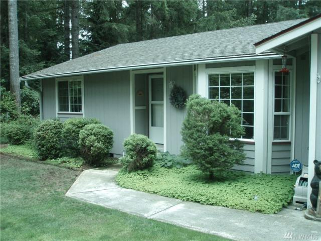 10014 135th St NW, Gig Harbor, WA 98329 (#1319507) :: Icon Real Estate Group
