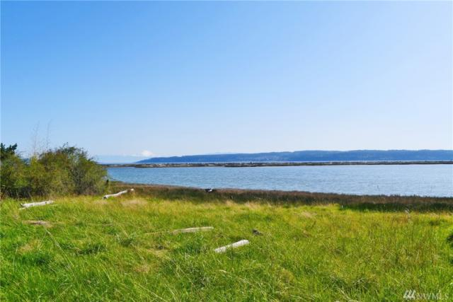 487 Race Rd, Coupeville, WA 98239 (#1320501) :: Homes on the Sound
