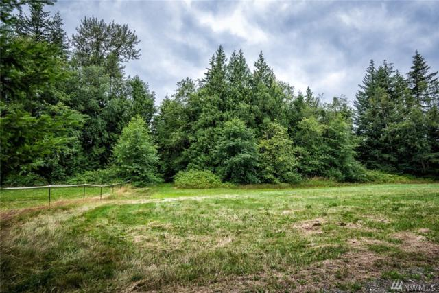 7365 Snowberry Lane, Ferndale, WA 98248 (#1320905) :: Brandon Nelson Partners