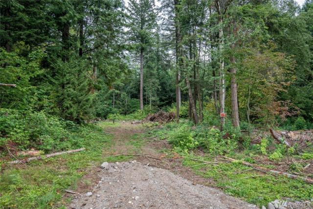 7368 Snowberry Lane, Ferndale, WA 98248 (#1320962) :: NW Home Experts