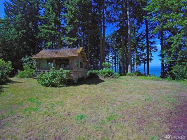 9999 Shimko Rd, Joyce, WA 98363 (#1321126) :: Keller Williams Realty Greater Seattle
