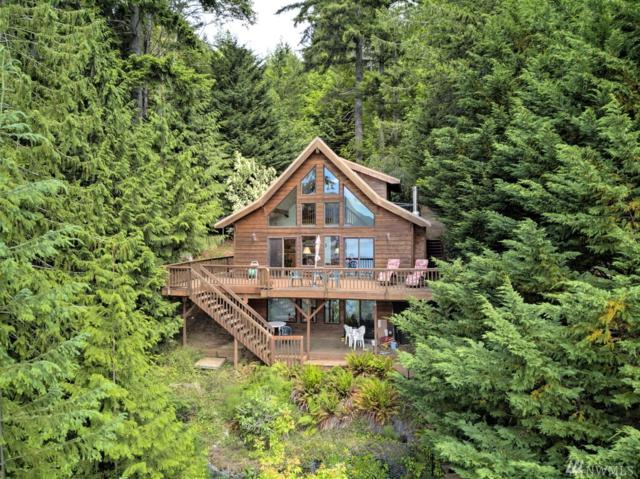 160 N Lakeshore Place, Hoodsport, WA 98548 (#1321623) :: Keller Williams Realty Greater Seattle