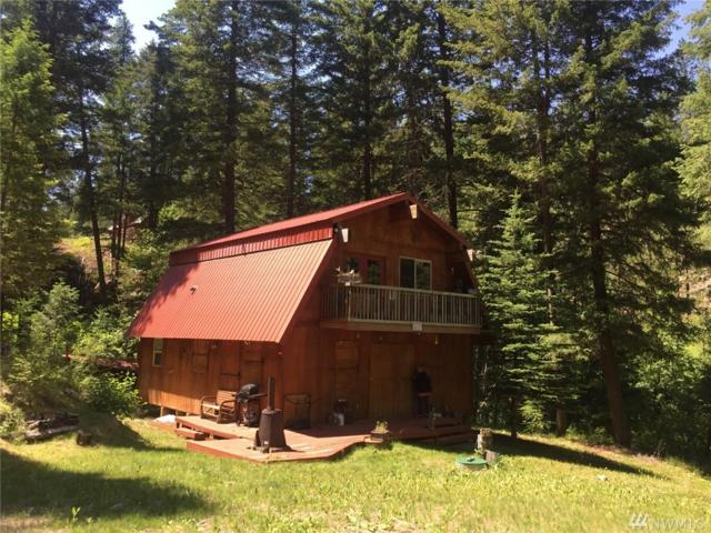 289 West Fork Rd, Conconully, WA 98819 (#1321682) :: Real Estate Solutions Group