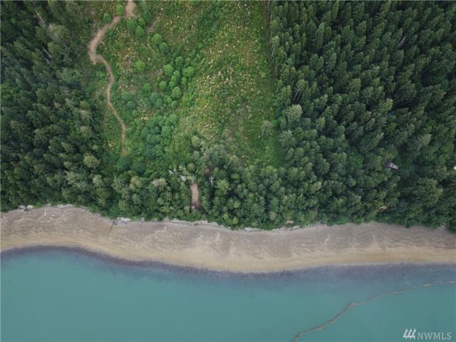 203 Sierra Trail, Quilcene, WA 98376 (#1321888) :: Homes on the Sound