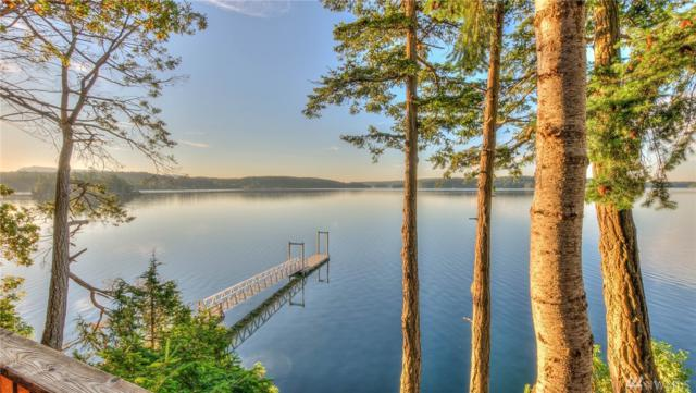 1361 Spring Point Rd, Orcas Island, WA 98245 (#1322028) :: Homes on the Sound