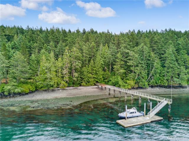 111 Tides Run Rd, Shaw Island, WA 98286 (#1322044) :: Real Estate Solutions Group