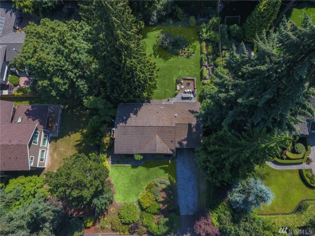 2514 104th Ave SE, Bellevue, WA 98004 (#1322309) :: Tribeca NW Real Estate