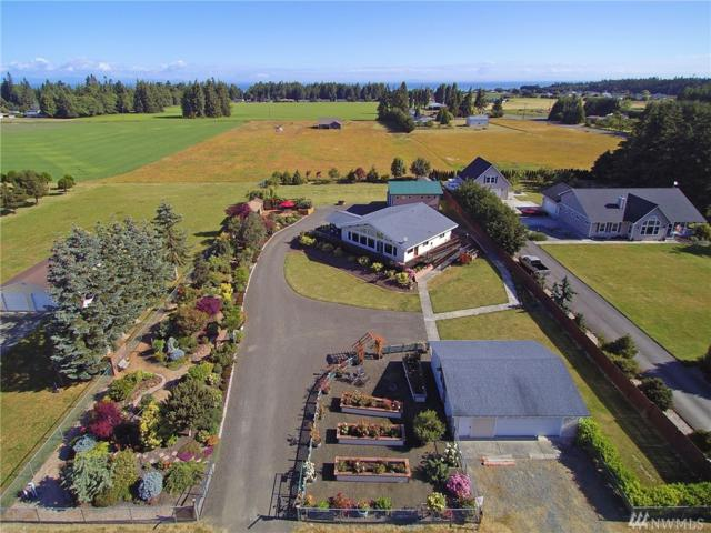82 Alpine View Lane, Port Angeles, WA 98362 (#1322424) :: Icon Real Estate Group