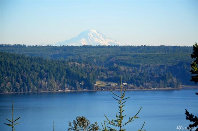 0 Rustic Ridge, Lilliwaup, WA 98555 (#1322553) :: Homes on the Sound