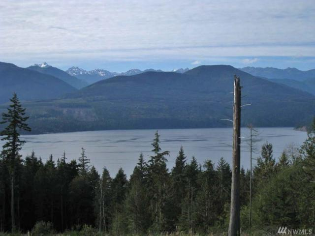 1-Tract Kens Wy, Quilcene, WA 98376 (#1322718) :: Homes on the Sound