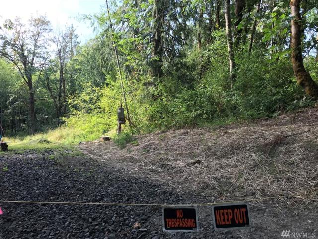 925 SE Salmonberry Rd, Port Orchard, WA 98366 (#1323420) :: Mike & Sandi Nelson Real Estate