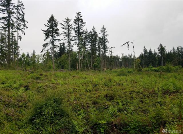 0-Parcel A Hersig Rd, Oak Harbor, WA 98277 (#1323914) :: Keller Williams Western Realty
