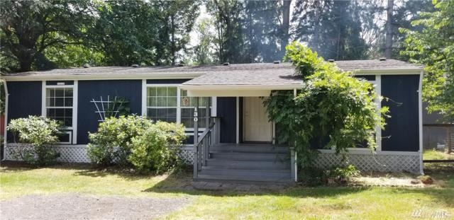 130 Holiday Lane, Packwood, WA 98361 (#1324081) :: Homes on the Sound