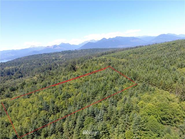 724 Hazel Point Road, Quilcene, WA 98376 (#1324451) :: Alchemy Real Estate