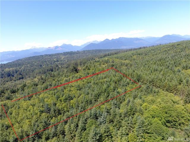 724 Hazel Point Rd, Quilcene, WA 98376 (#1324451) :: Northern Key Team