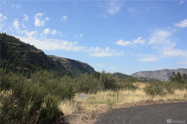 39395 Bluff Overlook Pt N, Lincoln, WA 99147 (#1324478) :: Capstone Ventures Inc