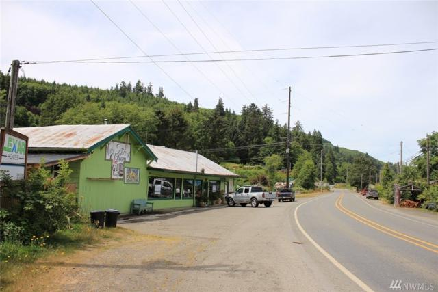 16590 W Hwy 112, Clallam Bay, WA 98326 (#1324557) :: Real Estate Solutions Group