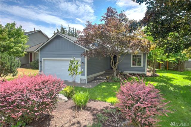23031 SE 282nd Ct, Maple Valley, WA 98038 (#1324921) :: The Craig McKenzie Team
