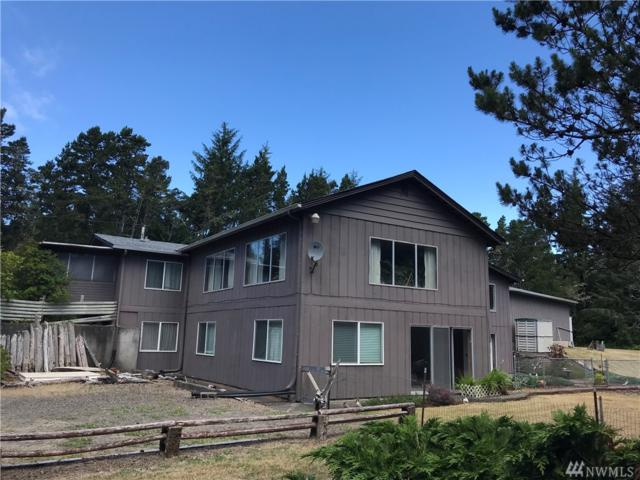 27212 Z St, Ocean Park, WA 98640 (#1324950) :: NW Home Experts