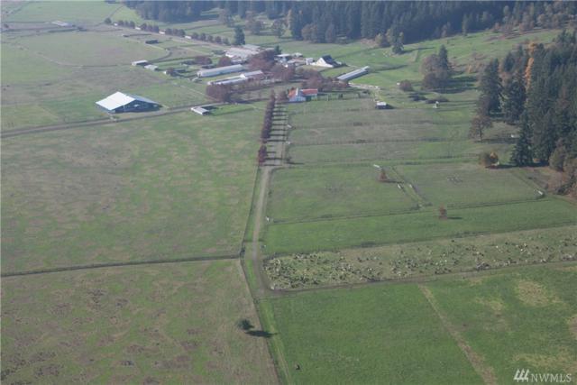 16641 Old Highway 99 SE, Tenino, WA 98589 (#1325059) :: NW Home Experts