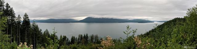 2 Sierra Trail, Quilcene, WA 98376 (#1325151) :: Homes on the Sound