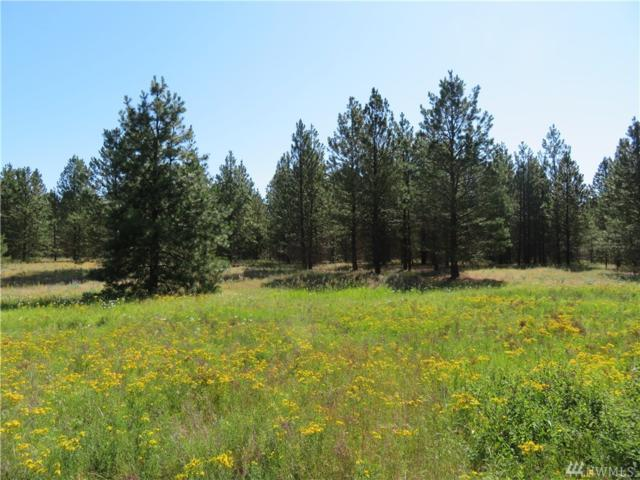 0-Lot 1 Sourdough Flats Rd, Republic, WA 99166 (#1325552) :: Brandon Nelson Partners