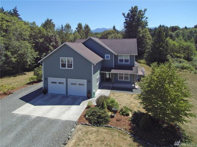 170 Rickarla Cir, Port Angeles, WA 98363 (#1326506) :: Costello Team
