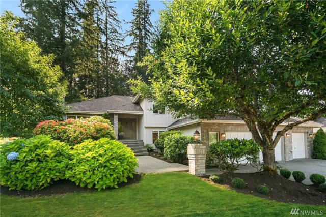 2533 234th Place SE, Sammamish, WA 98075 (#1326602) :: Beach & Blvd Real Estate Group