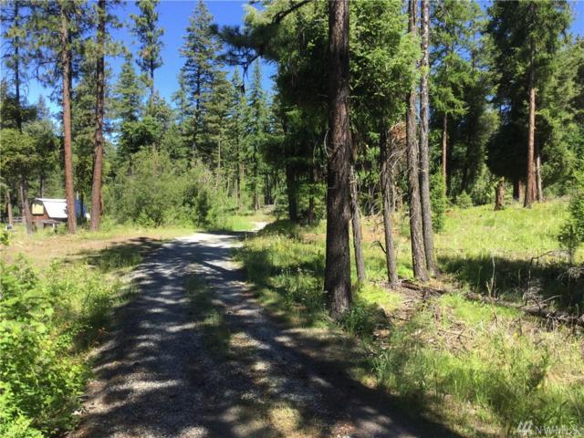 189 Summit Lake Rd, Tonasket, WA 98855 (#1326617) :: Keller Williams Realty Greater Seattle