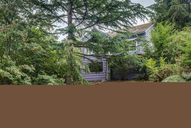724 N Forest, Bellingham, WA 98225 (#1327503) :: Brandon Nelson Partners