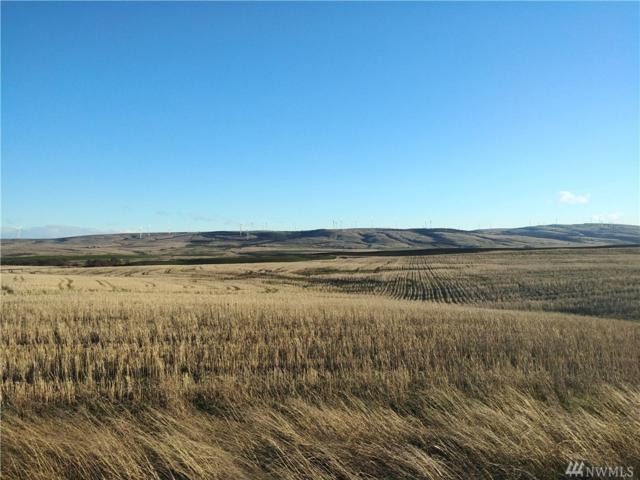 0 Three Spurs Lp, Goldendale, WA 98620 (#1327505) :: Real Estate Solutions Group