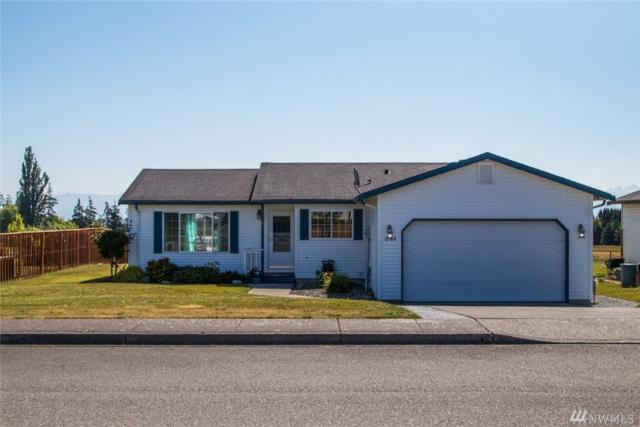 6184 Pacific Heights Dr, Ferndale, WA 98248 (#1327688) :: Ben Kinney Real Estate Team