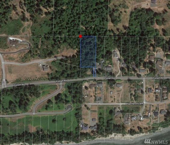 0 Polnell Rd, Oak Harbor, WA 98277 (#1327703) :: NW Home Experts