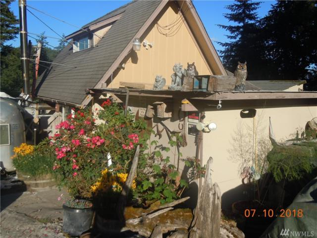 50005 146th Ave E, Eatonville, WA 98328 (#1327846) :: Better Homes and Gardens Real Estate McKenzie Group